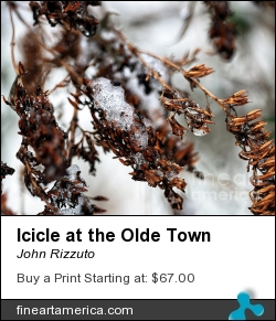 Icicle At The Olde Town by John Rizzuto - Photograph - Photography