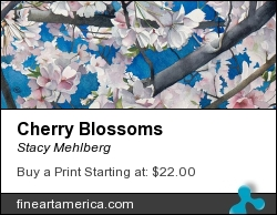 Cherry Blossoms by Stacy Mehlberg - Painting - Watercolor