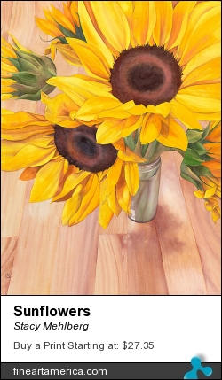 Sunflowers by Stacy Mehlberg - Painting - Watercolor