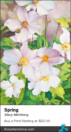Spring by Stacy Mehlberg - Painting - Watercolor