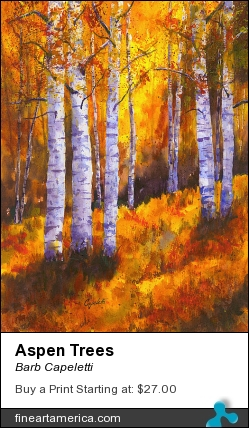 Aspen Trees by Barb Capeletti - Painting - Watercolor