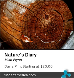 Nature's Diary by Mike Flynn - Photograph - Photoart