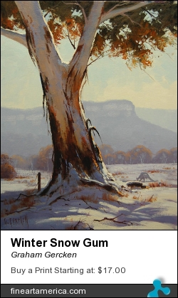 Winter Snow Gum by Graham Gercken - Painting - Oil On Canvas