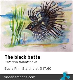 The Black Betta by Katerina Kovatcheva - Painting - Watercolor