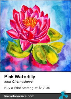 Pink Waterlilly by Irina Chernysheva - Painting - Watercolour