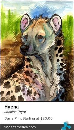 Hyena by Jessica Pryor - Painting - Ink, Water Color