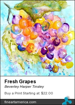 Fresh Grapes by Beverley Harper Tinsley - Painting - Watercolor