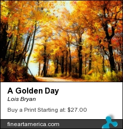 A Golden Day by Lois Bryan - Photograph - Photography - Digital Art