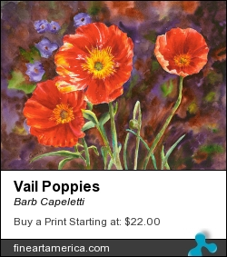 Vail Poppies by Barb Capeletti - Painting - Watercolor