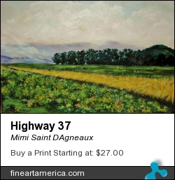 Highway 37 by Mimi Saint DAgneaux - Painting - Oil On Canvas