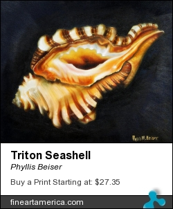 Triton Seashell by Phyllis Beiser - Painting - Oil On Canvas