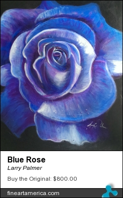 Blue Rose by Larry Palmer - Painting - Mixed