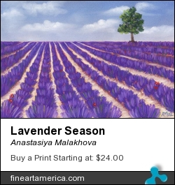 Lavender Season by Anastasiya Malakhova - pastels on paper
