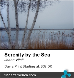 Serenity By The Sea by Joann Vitali - Photograph - Photography