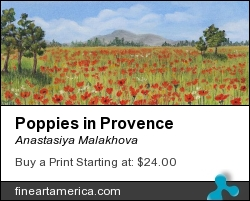 Poppies in Provence  by Anastasiya Malakhova - pastels on paper