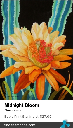 Midnight Bloom by Carol Sabo - Painting - Acrylic On Canvas