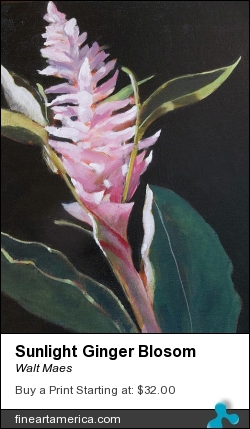 Sunlight Ginger Blosom by Walt Maes - Painting - Acrylic On Panel