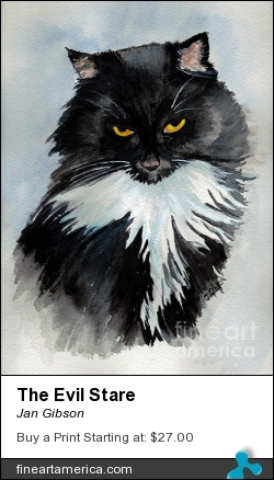 The Evil Stare by Jan Gibson - Painting - Watercolor
