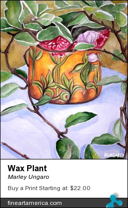 Wax Plant by Marley Ungaro - Painting - Watercolor