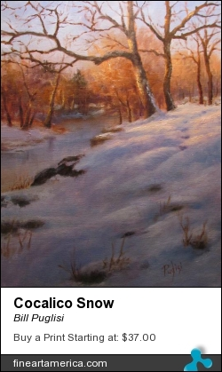 Cocalico Snow by Bill Puglisi - Pastel - Oil On Canvas