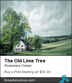 The Old Lime Tree by Rosemary Colyer - Painting - Pastel On Board