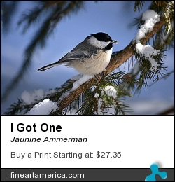 I Got One by Jaunine Ammerman - Photograph - Photographs