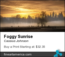 Foggy Sunrise by Cassius Johnson - Photograph - Photograph