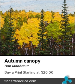 Autumn Canopy by Bob MacArthur - Painting