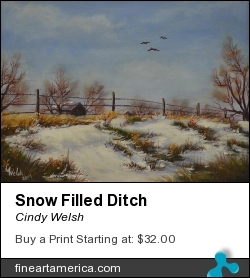 Snow Filled Ditch by Cindy Welsh - Painting