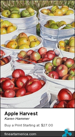 Apple Harvest by Karen Hammer - Painting - Watercolor