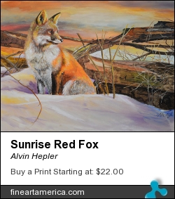 Sunrise Red Fox by Alvin Hepler - Painting - Acrylic