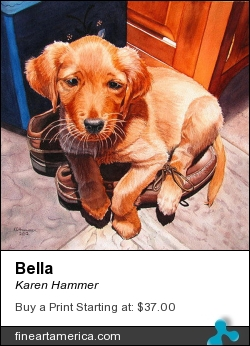 Bella by Karen Hammer - Painting - Watercolor
