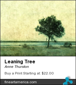 Leaning Tree by Anne Thurston - Photograph - Photography