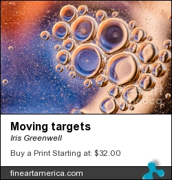 Moving Targets by Iris Greenwell - Photograph - Photography