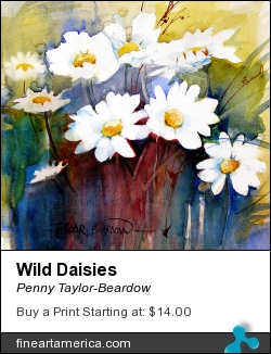 Wild Daisies by Penny Taylor-Beardow - Painting - Watercolour