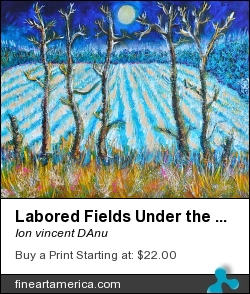 Labored Fields Under The Moon Light by Ion vincent DAnu - Painting