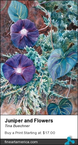 Juniper And Flowers by Tina Buechner - Painting - Transparent Watercolor