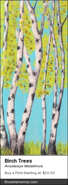 Birch Trees by Anastasiya Malakhova - pastels on paper