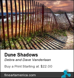 Dune Shadows by Debra and Dave Vanderlaan - Photograph - Photography