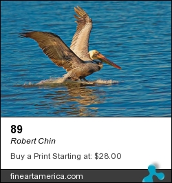 89 by Robert Chin - Photograph - Photographs
