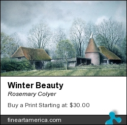 Winter Beauty by Rosemary Colyer - Painting - Pastel On Board