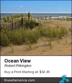Ocean View by Robert Pilkington - Photograph - Photography