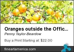 Oranges Outside The Office Window by Penny Taylor-Beardow - Painting - Watercolour