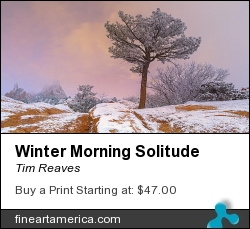 Winter Morning Solitude by Tim Reaves - Photograph - Photography