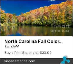 North Carolina Fall Colors by Tim Dahl - Photograph