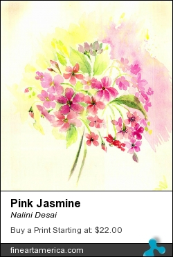 Pink Jasmine by Nalini Desai - Painting - Water Colours