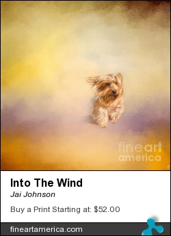 Into The Wind by Jai Johnson - Photograph