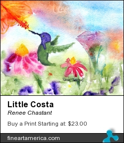 Little Costa by Renee Chastant - Painting - Watercolor On Paper
