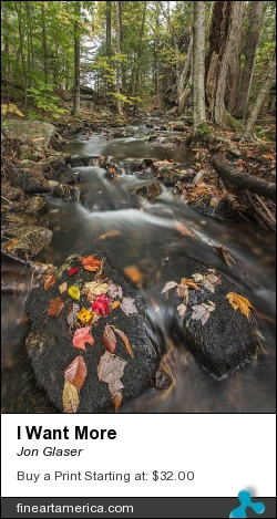I Want More by Jon Glaser - Photograph - Photography