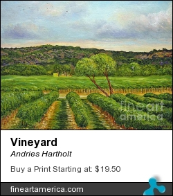 Vineyard by Andries Hartholt - Painting - Oil On Canvas